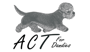 ACT For Dandies